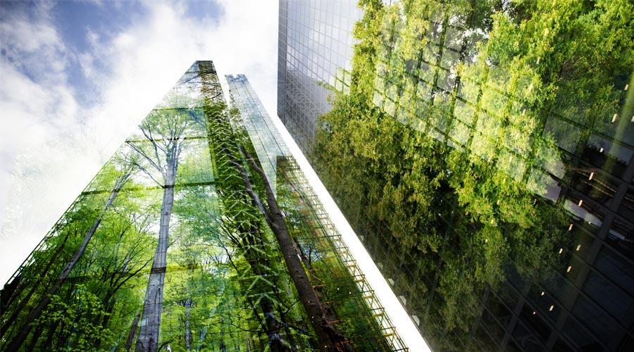 immeuble avec en reflet la nature