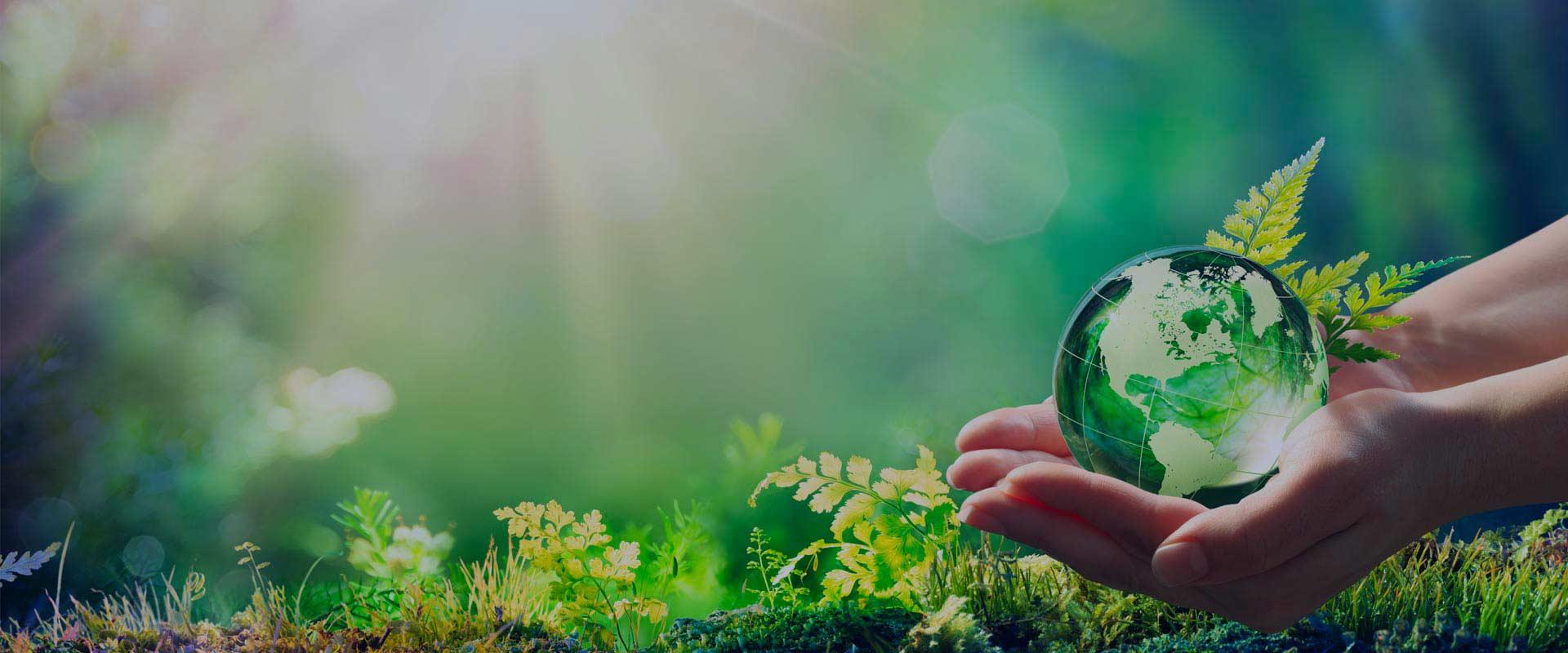 Mains tenant le monde dans un environnement verdoyant