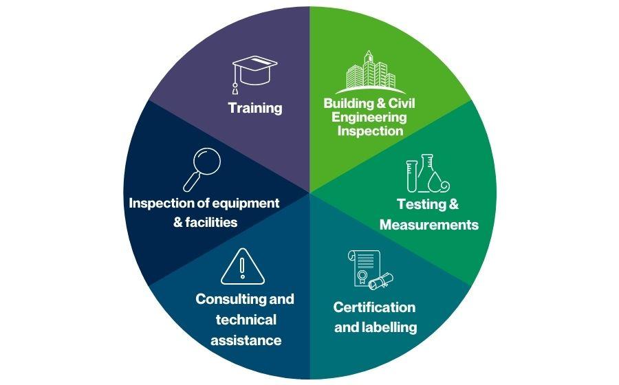 Diagramme présentant les métiers Apave en EN